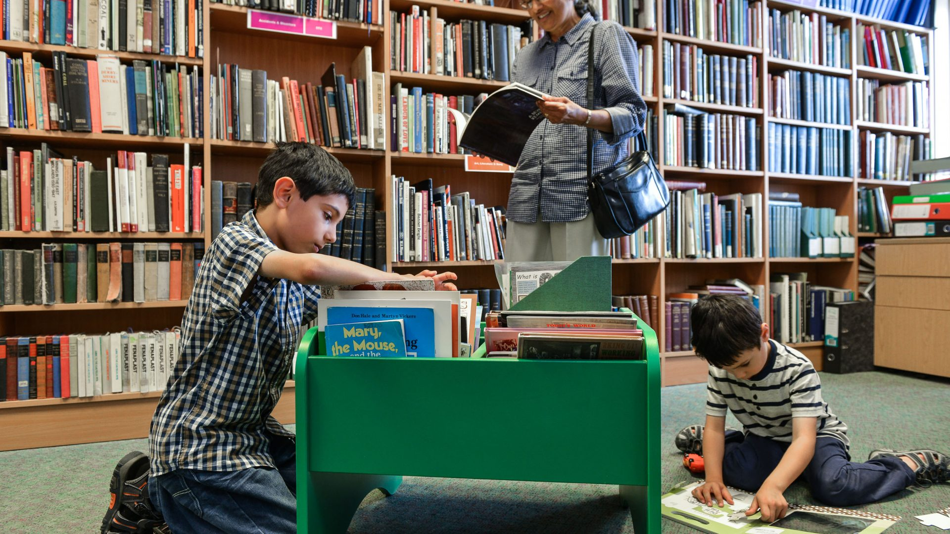Using the Library
